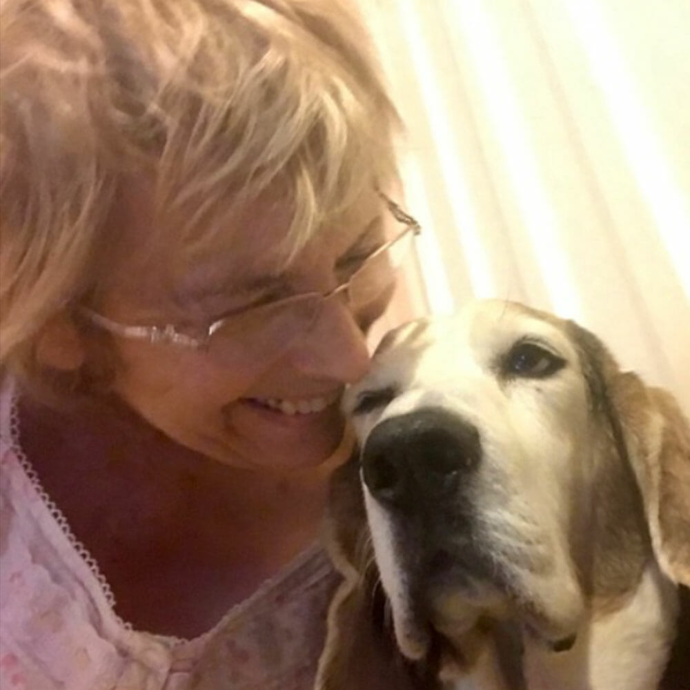 about vegan counseling nancy elner